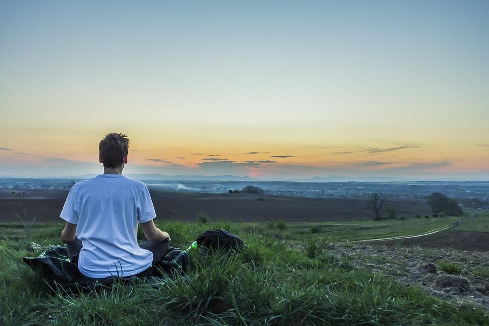 las propiedades del longan para reducir el estrés