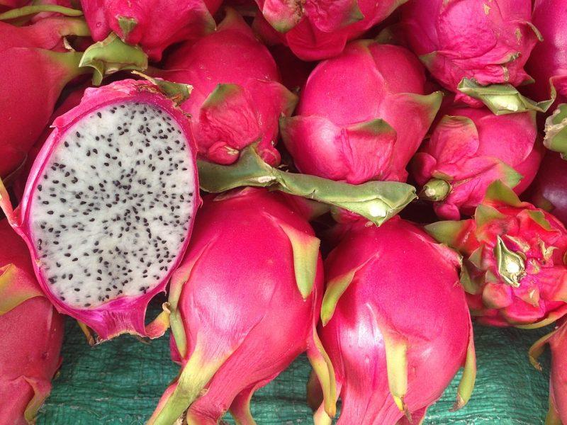 pitaya, vida de color de rosa, exotic fruit box